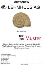GESCHENK GUTSCHEIN CHF 50.00